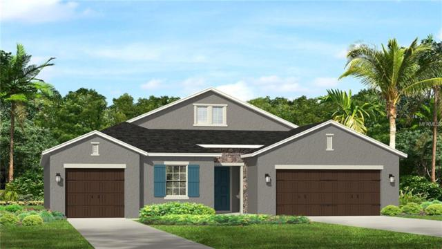 33143 Azalea Ridge Drive, Wesley Chapel, FL 33545 (MLS #T3107929) :: The Duncan Duo Team
