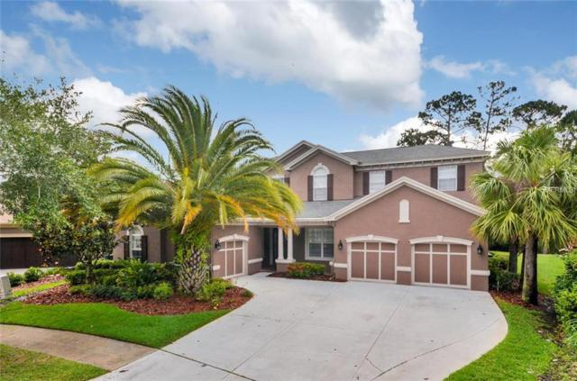 14813 Tudor Chase Drive, Tampa, FL 33626 (MLS #T3107965) :: O'Connor Homes