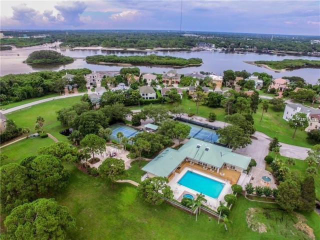 Lot #67 Harbour Watch Drive, Tarpon Springs, FL 34689 (MLS #T3107987) :: Mark and Joni Coulter | Better Homes and Gardens