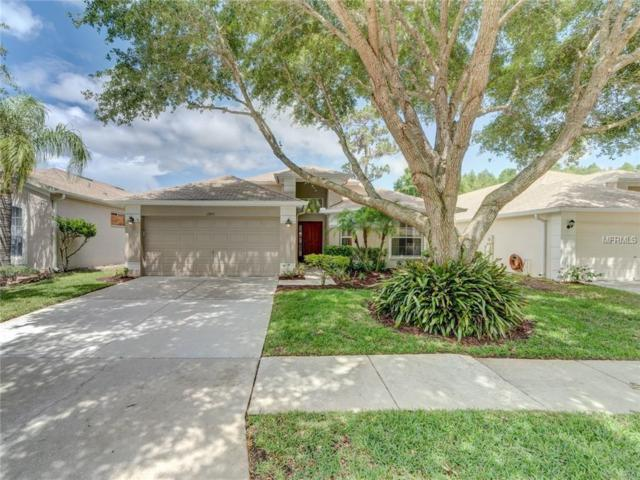 13411 Fawn Springs Drive, Tampa, FL 33626 (MLS #T3108028) :: O'Connor Homes