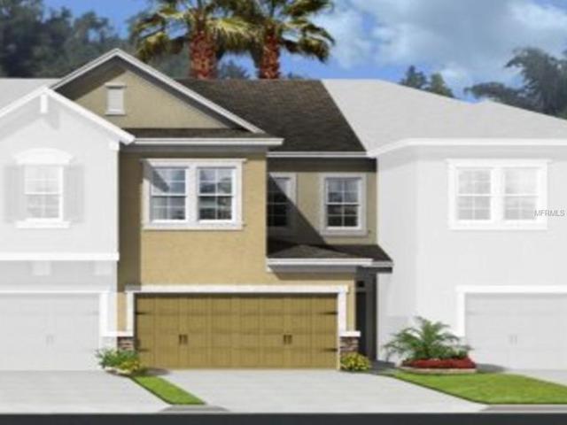 17525 Promenade Drive, Clermont, FL 34711 (MLS #T3108112) :: The Duncan Duo Team