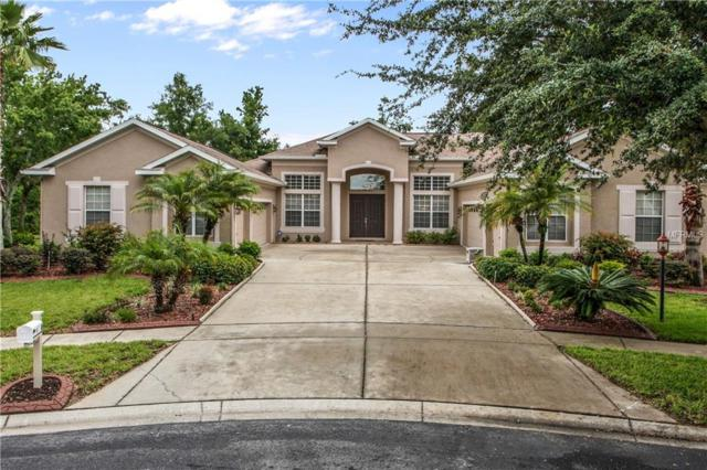 1002 Emerald Hill Way, Valrico, FL 33594 (MLS #T3108116) :: Arruda Family Real Estate Team