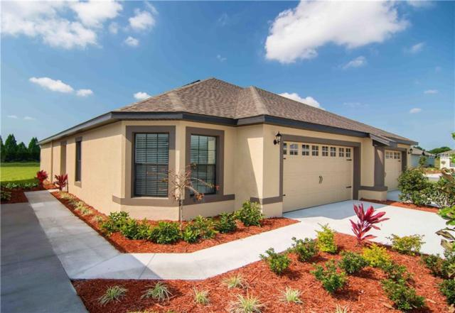 5504 Maggiore Boulevard, Lakeland, FL 33805 (MLS #T3108125) :: The Duncan Duo Team