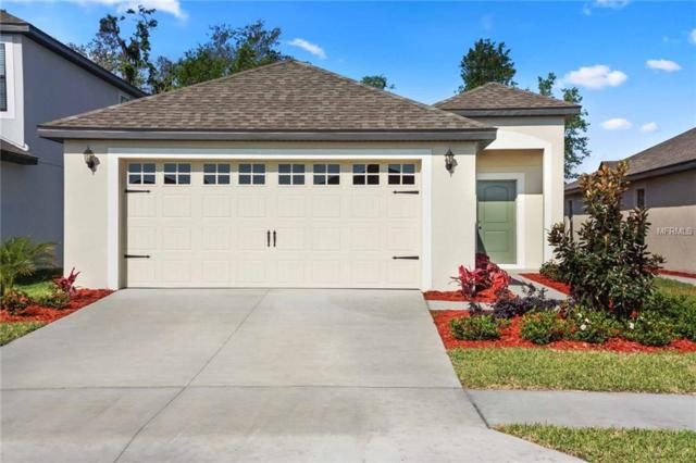 6423 Como Place, Lakeland, FL 33805 (MLS #T3108142) :: The Duncan Duo Team