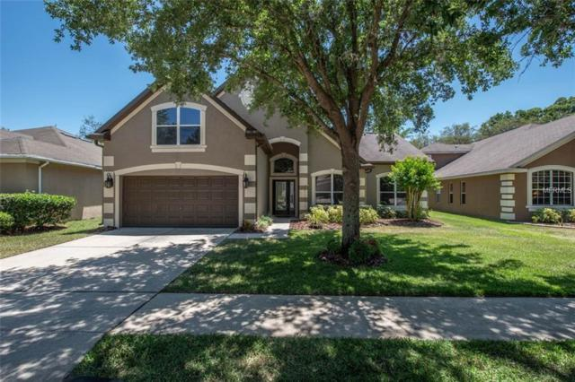 6119 Whimbrelwood Drive, Lithia, FL 33547 (MLS #T3108174) :: The Duncan Duo Team