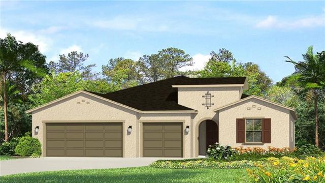 17928 Woodland View Drive, Lutz, FL 33548 (MLS #T3108177) :: The Duncan Duo Team