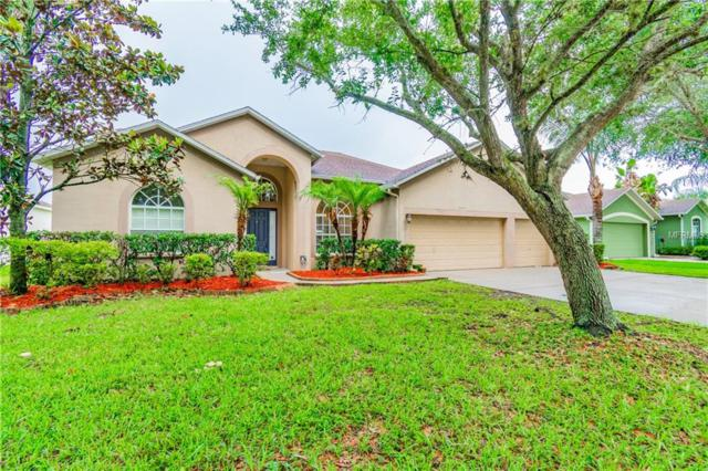 2616 Abbey Grove Drive, Valrico, FL 33594 (MLS #T3108187) :: Arruda Family Real Estate Team
