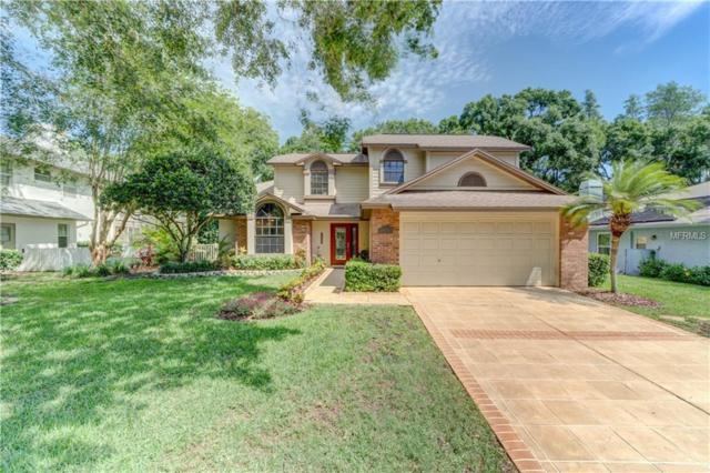 6307 Songbird Way, Tampa, FL 33625 (MLS #T3108205) :: O'Connor Homes