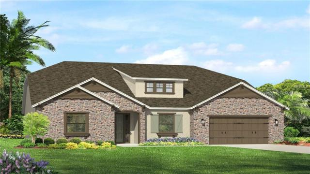 18017 Pine Hammock Boulevard, Lutz, FL 33548 (MLS #T3108249) :: Premium Properties Real Estate Services