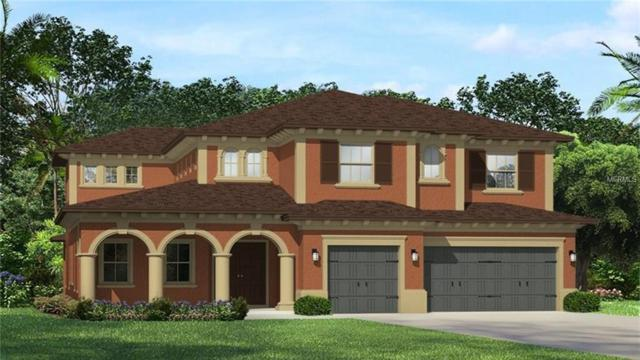 18012 Woodland View Drive, Lutz, FL 33548 (MLS #T3108256) :: The Duncan Duo Team