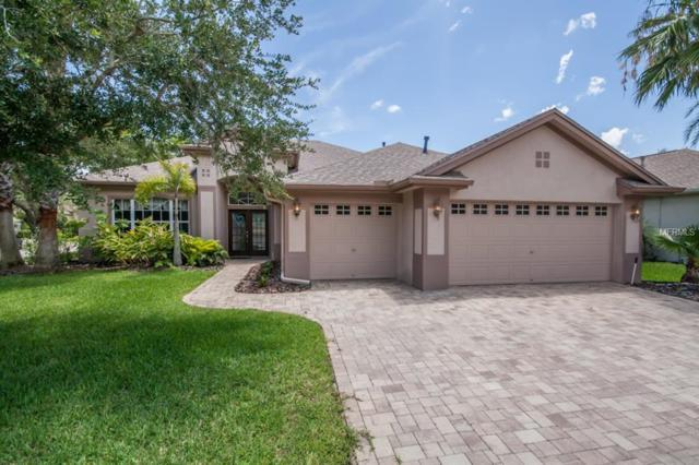 10307 Millport Drive, Tampa, FL 33626 (MLS #T3108273) :: O'Connor Homes