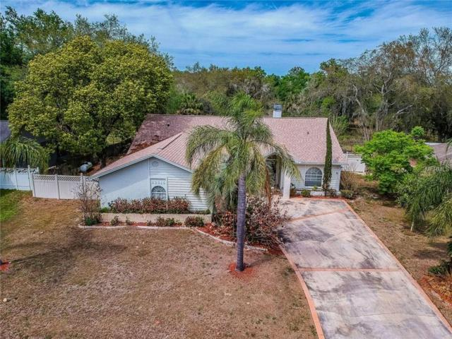 23315 Shining Star Drive, Land O Lakes, FL 34639 (MLS #T3108292) :: The Duncan Duo Team