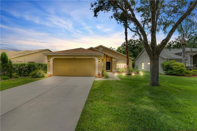 12957 Royal George Avenue, Odessa, FL 33556 (MLS #T3108353) :: Team Bohannon Keller Williams, Tampa Properties