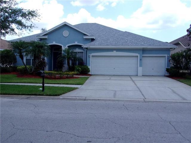 10508 Chelmsford Way, Tampa, FL 33626 (MLS #T3108400) :: Delgado Home Team at Keller Williams