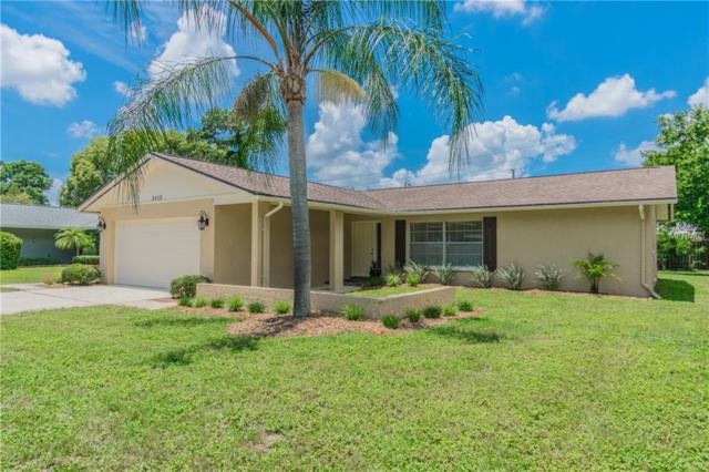 2412 Hazelwood Lane, Clearwater, FL 33763 (MLS #T3108430) :: Team Bohannon Keller Williams, Tampa Properties