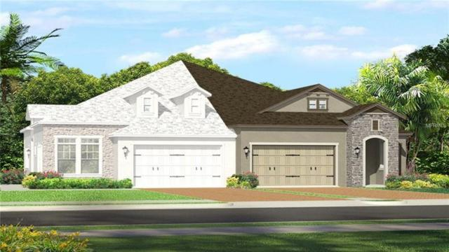 4305 Barletta Court, Wesley Chapel, FL 33543 (MLS #T3108506) :: The Duncan Duo Team
