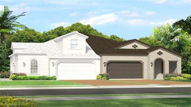 4181 Barletta Court, Wesley Chapel, FL 33543 (MLS #T3108509) :: The Duncan Duo Team