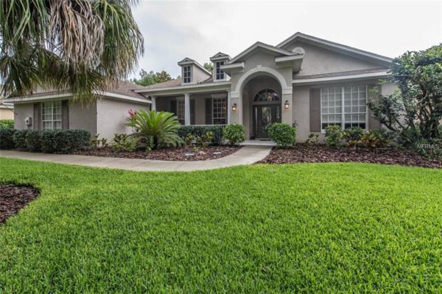6128 Kestrelridge Drive, Lithia, FL 33547 (MLS #T3108510) :: Arruda Family Real Estate Team