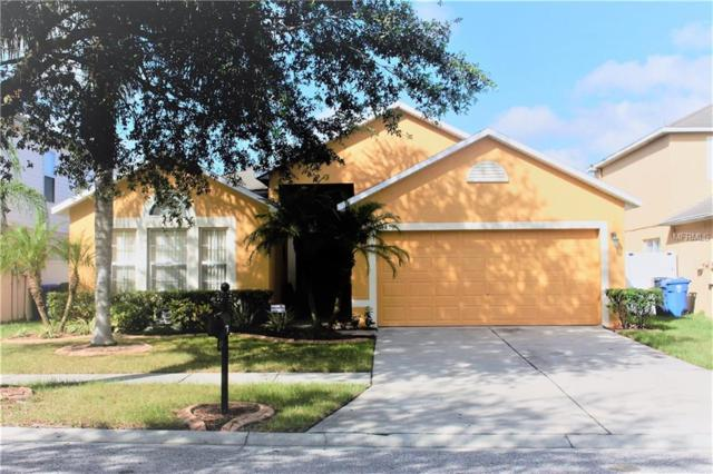 10419 Fly Fishing Street, Riverview, FL 33569 (MLS #T3108511) :: The Duncan Duo Team