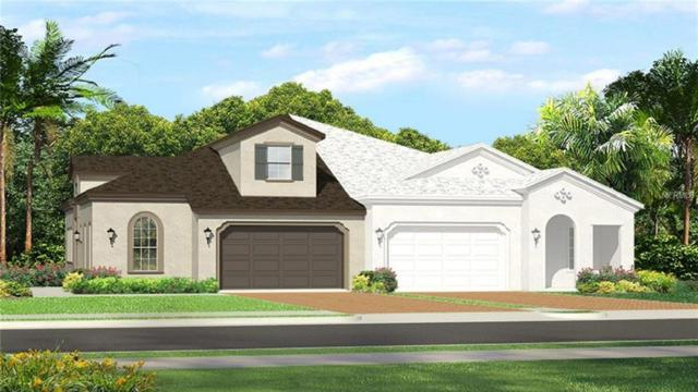 4175 Barletta Court, Wesley Chapel, FL 33543 (MLS #T3108512) :: The Duncan Duo Team