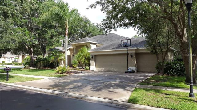 4335 Glendon Place, Valrico, FL 33596 (MLS #T3108619) :: Arruda Family Real Estate Team