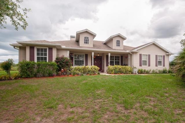 26920 Brandiff Road E, Myakka City, FL 34251 (MLS #T3108728) :: The Duncan Duo Team