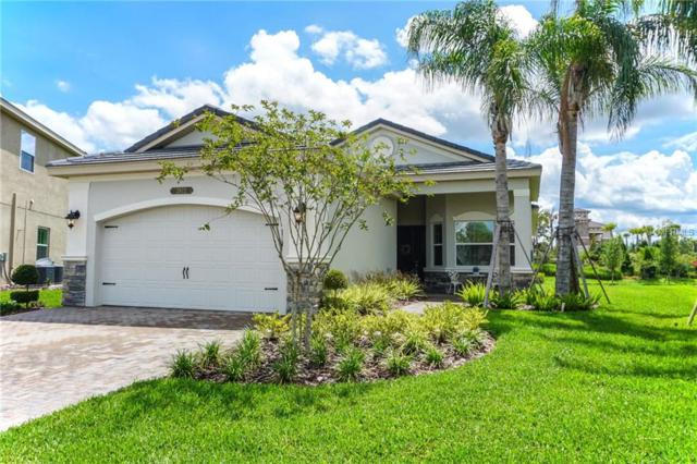 2872 Tarragona Way, Wesley Chapel, FL 33543 (MLS #T3108735) :: Arruda Family Real Estate Team