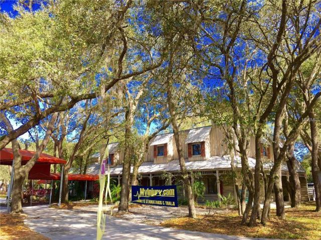 8751 N Himes Avenue, Tampa, FL 33614 (MLS #T3108738) :: The Duncan Duo Team