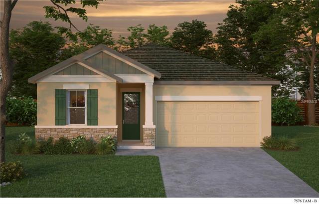 13905 Kingfisher Glen Drive, Lithia, FL 33547 (MLS #T3108745) :: Arruda Family Real Estate Team