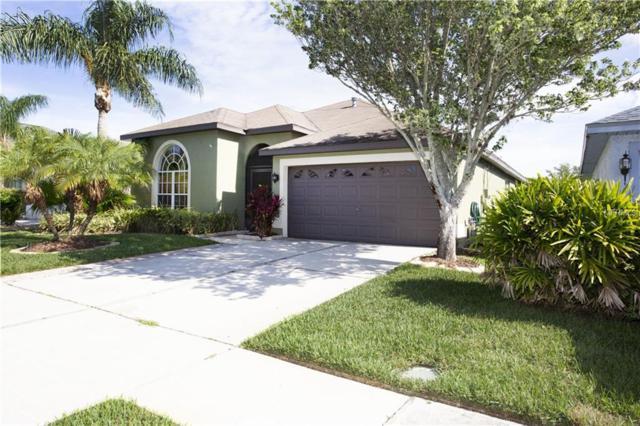 1255 Vinetree Drive, Brandon, FL 33510 (MLS #T3108763) :: Arruda Family Real Estate Team