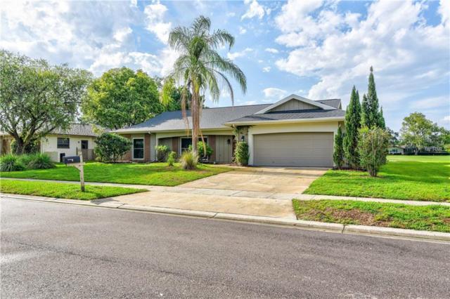 150 Water Oak Way, Oldsmar, FL 34677 (MLS #T3108768) :: O'Connor Homes