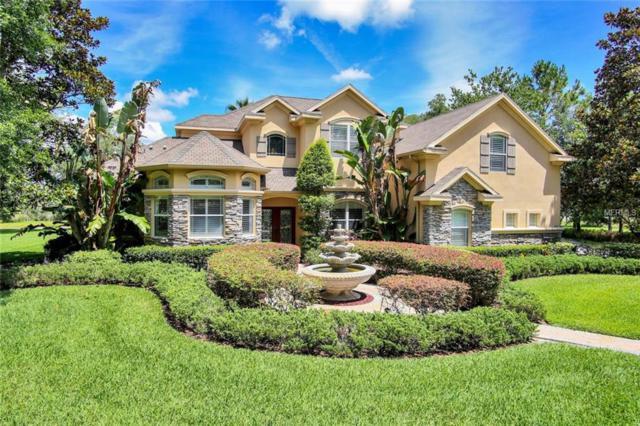 1514 Newberger Road, Lutz, FL 33549 (MLS #T3108782) :: The Lockhart Team