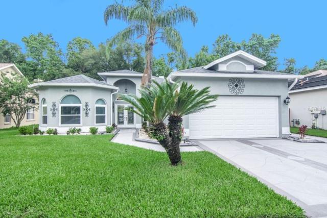 28439 Openfield Loop, Wesley Chapel, FL 33543 (MLS #T3108790) :: Arruda Family Real Estate Team