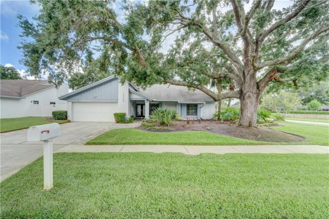 14706 Dartmoor Lane, Tampa, FL 33624 (MLS #T3108845) :: Arruda Family Real Estate Team