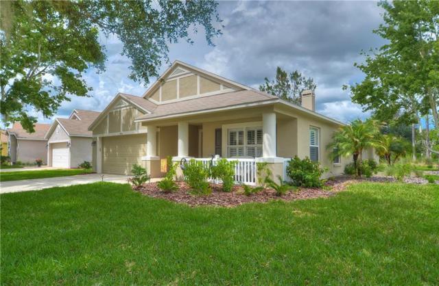 7530 Citrus Blossom Drive, Land O Lakes, FL 34637 (MLS #T3108867) :: Arruda Family Real Estate Team