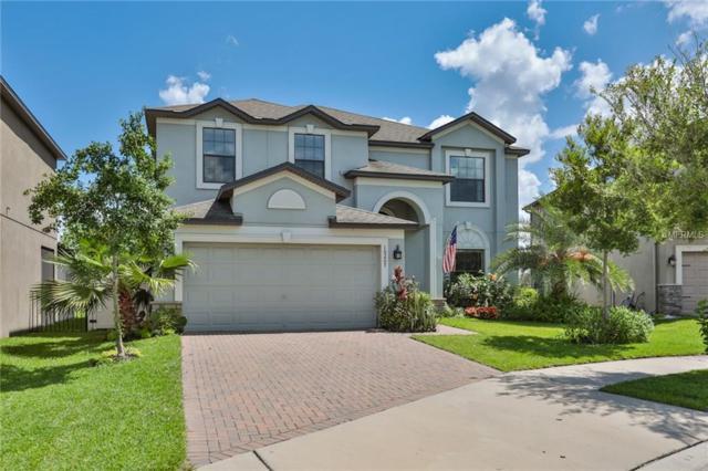 10207 Stedfast Court, Ruskin, FL 33573 (MLS #T3108939) :: Rutherford Realty Group | Keller Williams