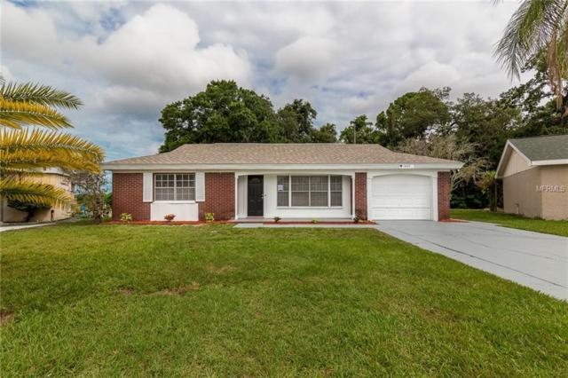 3603 Luma Drive, Holiday, FL 34691 (MLS #T3108960) :: Jeff Borham & Associates at Keller Williams Realty