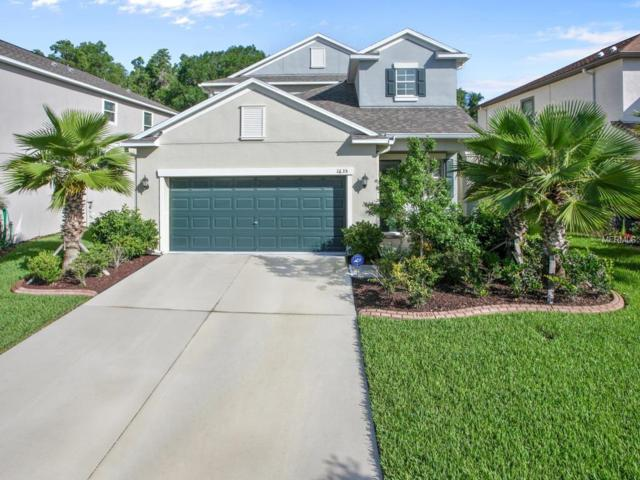 1635 Ludington Avenue, Wesley Chapel, FL 33543 (MLS #T3108983) :: Team Bohannon Keller Williams, Tampa Properties
