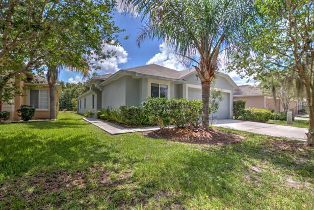 18217 Portside Street, Tampa, FL 33647 (MLS #T3109089) :: Jeff Borham & Associates at Keller Williams Realty