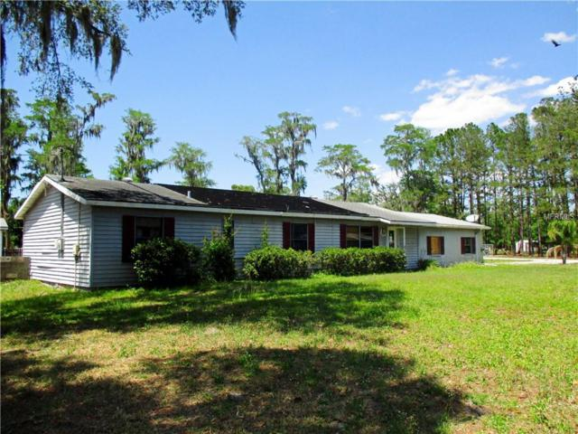 17351 Chinaberry Road, Lutz, FL 33558 (MLS #T3109107) :: The Duncan Duo Team