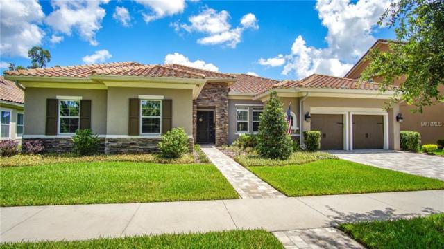5308 Candler View Drive, Lithia, FL 33547 (MLS #T3109129) :: Lovitch Realty Group, LLC