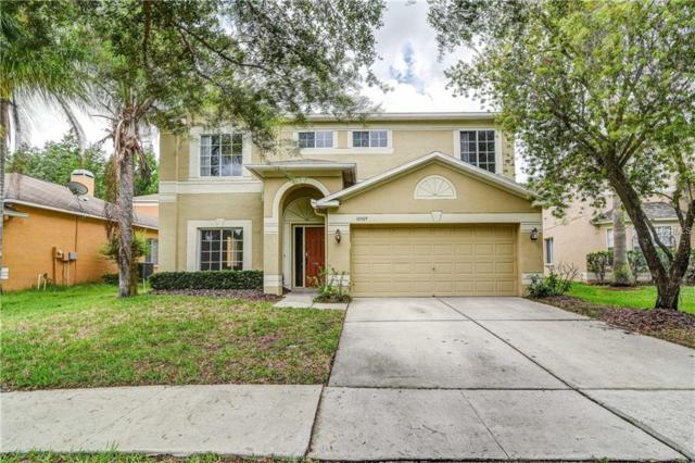 Address Not Published, Tampa, FL 33647 (MLS #T3109133) :: The Duncan Duo Team