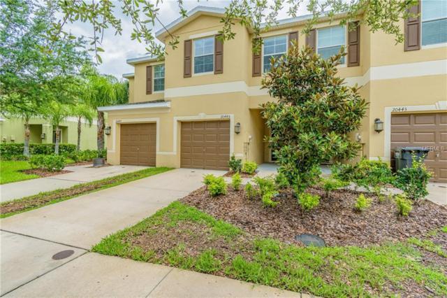 20445 Berrywood Lane, Tampa, FL 33647 (MLS #T3109140) :: Jeff Borham & Associates at Keller Williams Realty