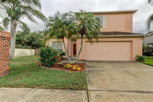 11602 Fox Creek Drive, Tampa, FL 33635 (MLS #T3109143) :: Team Bohannon Keller Williams, Tampa Properties