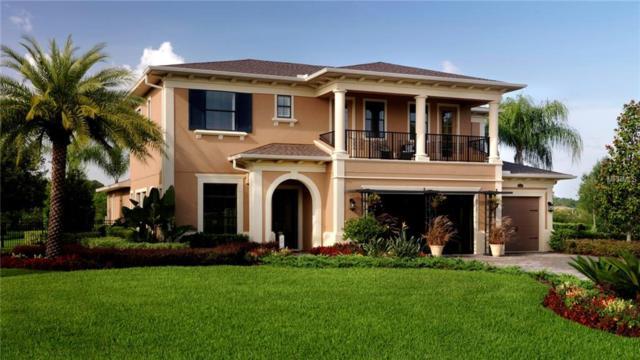 2516 Cordoba Ranch Boulevard, Lutz, FL 33559 (MLS #T3109184) :: The Duncan Duo Team