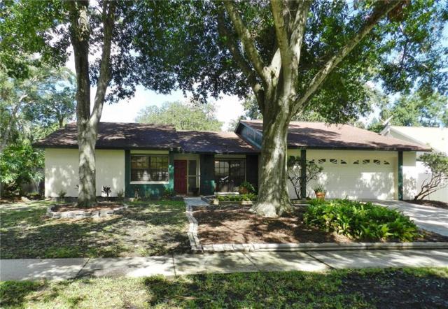 3819 Cloverhill Court, Brandon, FL 33511 (MLS #T3109346) :: White Sands Realty Group