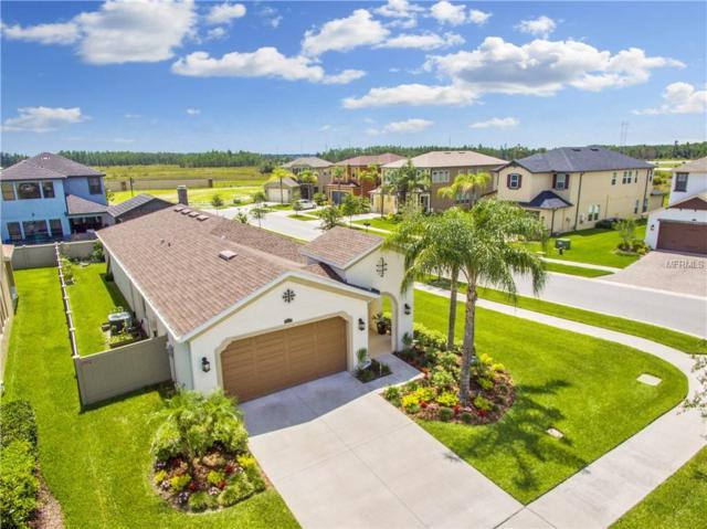 3970 Medicci Lane, Wesley Chapel, FL 33543 (MLS #T3109399) :: Team Bohannon Keller Williams, Tampa Properties