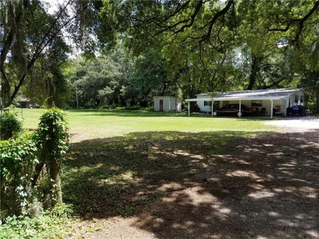 5910 Watson Road, Riverview, FL 33578 (MLS #T3109411) :: Griffin Group