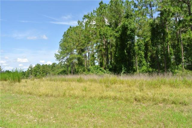 19897 Pinnacle Place, Brooksville, FL 34601 (MLS #T3109412) :: The Price Group