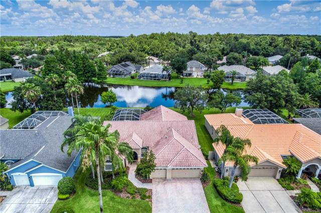 11911 Middlebury Drive, Tampa, FL 33626 (MLS #T3109463) :: The Duncan Duo Team